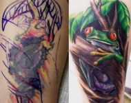 Tree Frog Cover up