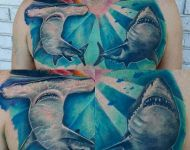 Shark Chest Piece